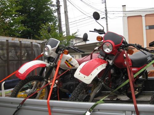 2010.08.01 (1).JPG